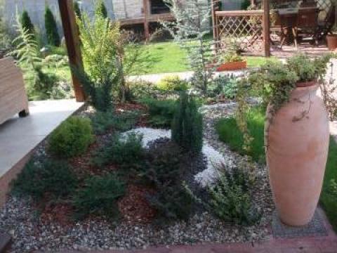 Amenajare gradini cu plante