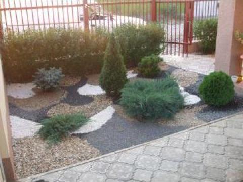 Amenajari gradini, spatii verzi - plante si piatra naturala