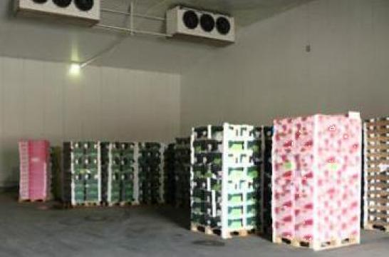 Camere, depozite frigorifice pentru legume fructe