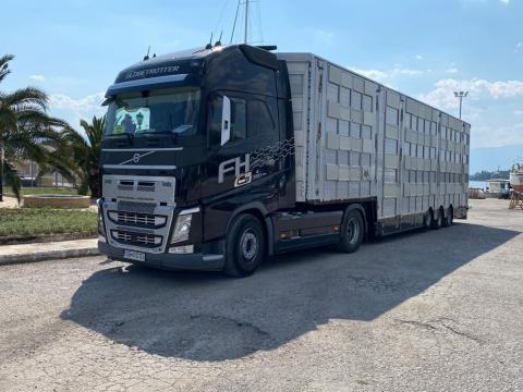 Camion Volvo FH-500 semiremorca Pezzaioli transport animale