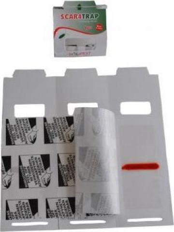 Capcana adeziva impotriva insectelor taratoare ScaraTrap