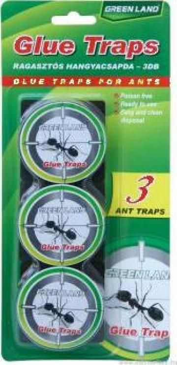 Capcana din plastic Glue traps for Ants