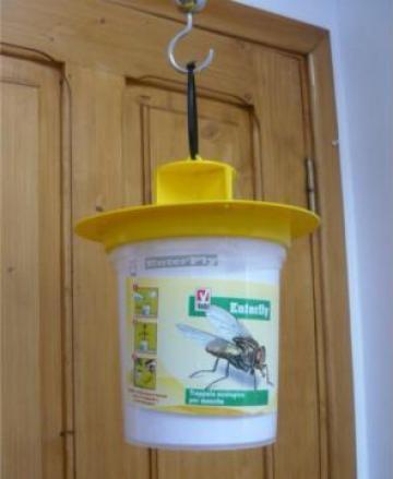 Capcana ecologica control muste si viespi - Enterfly