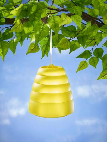 Capcana pentru viespi si albine
