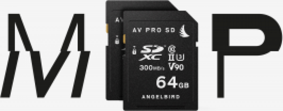 Card memorie Angelbird 64 GB pentru Panasonic GH5 & GH5S