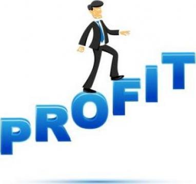 Consultanta in afaceri si management