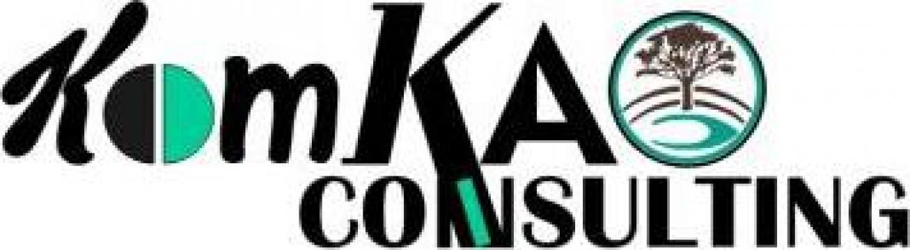 Consultanta pentru accesarea de fonduri nerambursabile