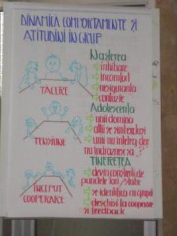 Curs Formare de formatori