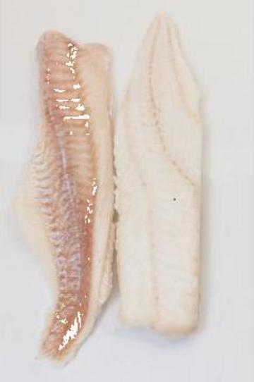 File de peste congelat Cod Gadus Morhua