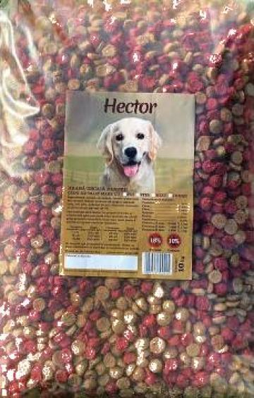 Hrana uscata pentru caini Hektor