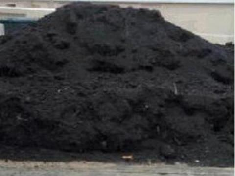 Pamant negru vegetal de padure
