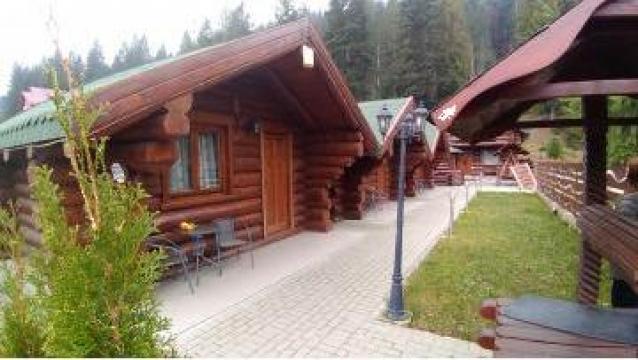 Porti din lemn masiv