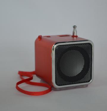 Radio MP3 Mini boxa portabila WS-Q5