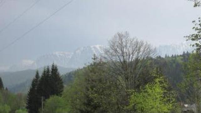 Sejur 7 zile - Tabara de vara la munte Valea Prahovei