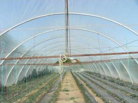Solar de legume