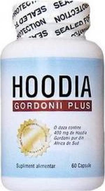 Tratament slabire Hoodia Gordonii Plus