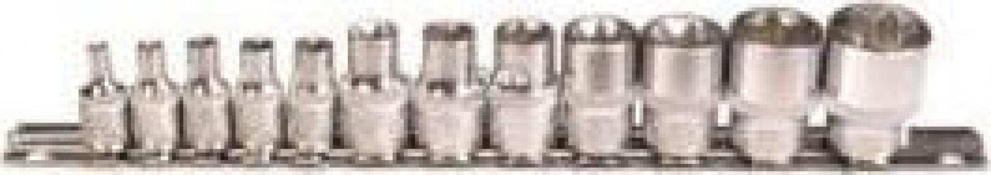 "Trusa tubulare 12 piese profil E, 1/4""+3/8"" - 2038"