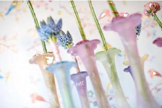 Vaze Flori sin sticla