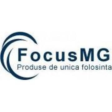 Focus MG Srl